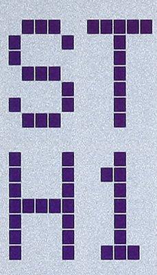 Charakter-Modul Ausschnitt FSTN, (blue), positiv